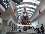 ウエーブの素晴らしいクリスマス・ツリー