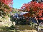 妙香池・虎頭岩の紅葉