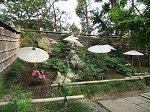 鶴岡八幡境内の「ぼたん園」