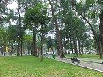 統一会堂前の緑の多い公園