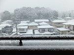 さらに降り続く雪(11:00)