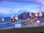済州島の海女の生活
