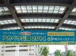 2014アカペラ公園.jpg