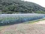 2014九州旅行615.jpg