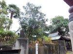 2014九州旅行640.jpg