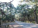 2014九州旅行776.jpg
