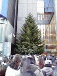 2014渋谷銀座4.jpg