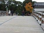 2014皇居紅葉狩り13.jpg