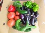 2015夏野菜収穫1.jpg