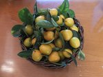 2015裏庭の果物6.jpg