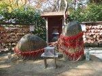 2015鎌倉源氏山散策4.jpg