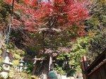 2015鎌倉源氏山散策7.jpg