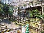 2016三溪園13.jpg