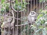 2016上野動物園19.jpg