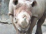 2016上野動物園23.jpg