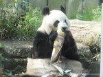 2016上野動物園3.jpg