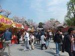 2016上野花見19.jpg