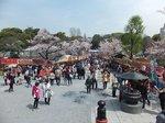 2016上野花見21.jpg