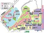 2016上野花見3.jpg