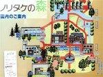 2016東海の紅葉巡り88.jpg