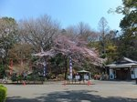 2016総持寺40.jpg