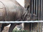 2016金沢動物園20.jpg