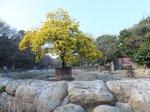 2016金沢動物園3.jpg