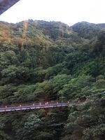 2019箱根あじさい電車16.jpg