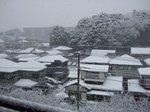 snowfall1.jpg