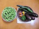 裏庭の新鮮野菜