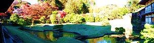 方丈庭園の心字池と紅葉