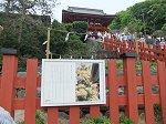 鎌倉鶴岡八幡宮大石段と上宮