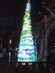 近所のクリスマスツリー