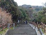 頂上まで続く階段。少々ハードな道