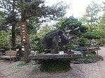 さまざまな石や盆栽が展示されている