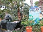 池を囲む岩や石像に済州島の溶岩が使われている蓮池の庭園