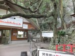 2014九州旅行189.jpg
