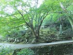 2014九州旅行293.jpg
