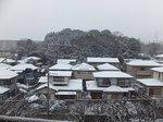 2014大雪1.jpg