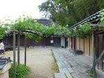2014関西旅行208.jpg
