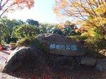 2014駿河湾クルース3.jpg