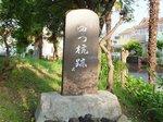 2016ご近所の花4.jpg