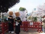 2016上野花見13.jpg