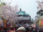 2016上野花見20.jpg