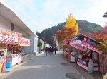 2016東海の紅葉巡り112.jpg