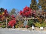 2016東海の紅葉巡り157.jpg