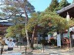 2016東海の紅葉巡り158.jpg