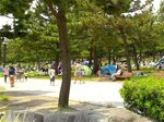 2016海の公園潮干狩り2.jpg