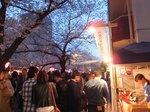 2016目黒川夜桜11.jpg