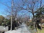 2016金沢八景3.jpg